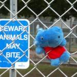Pas op: dieren kunnen bijten!