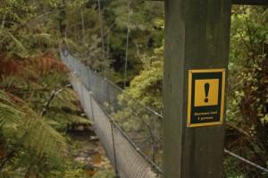 Dag 7: Murchison - Picton; Abel Tasman National Park