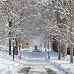 Winters wandelpad